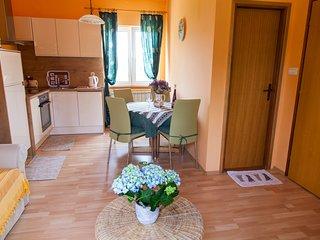 Sunny apartment at Adriatic coast