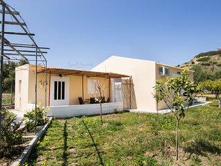 Lothiko House with big yard