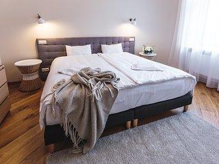 One-Bedroom Apartment 40