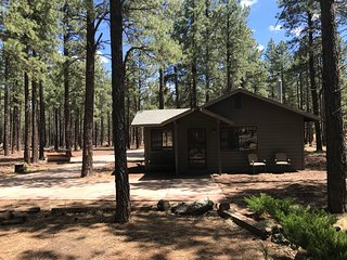 Cottage near Grand Canyon-Horse Riding, Target Shoot, Hike, Fire Pit & Gas BBQ!