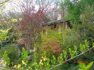 Il Ritorno - Villino in collina tra querce ed ulivi