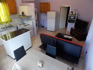 Stewart Vacation Apt-Trincity,Airport,Washer,Dryer,Movies,Premium TV, Office