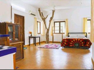 Villa Aurora, Auroville