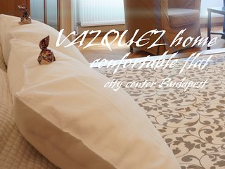 VAZQUEZ home_2 City center_confortable flat
