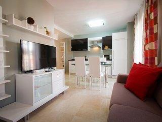 Carmen.1 bedroom apartment with terrace solarium in Malaga centre