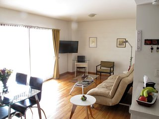deluxe new apartment - sleeps 2-4