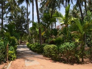 Picturesque Surroundings Homestay in Bangalore