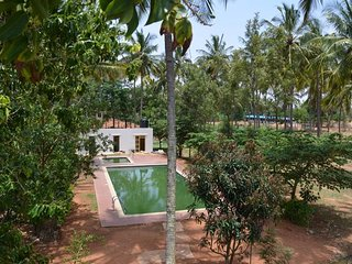 Delicious Homestay in Bangalore