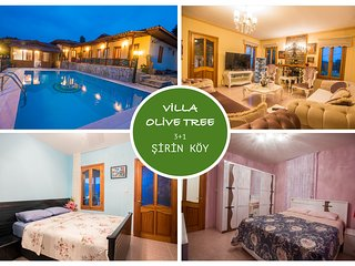 Villa Olive Tree Akcapınar Akyaka Daily Weekly Weekly Rentals