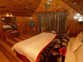 Decent Cottage in Manali