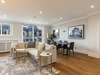 New Luxurious 2 bed flat w roof terrace in Mayfair