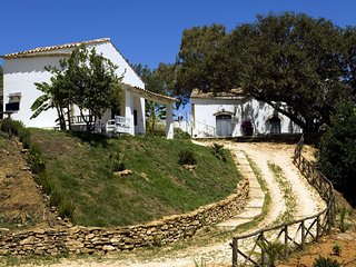 Balestrate Villa Sleeps 8 with Pool and WiFi - 5690567