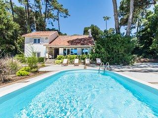 Villa Blanche - New!