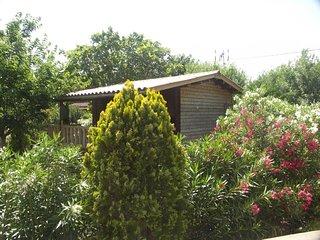 France long term rental in Alpes-Cote d`Azur, Roquebrune-sur-Argens