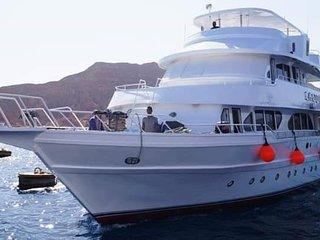 Safari cruiser South Sinai