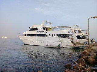 Red Sea safari tour