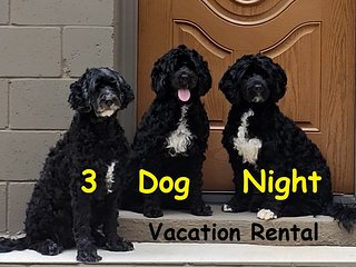 3 Dog Night Vacation Rental * 3 miles to TIEC Tryon Equestrian Center