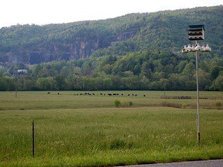 Incredible Mountain and Pasture Views, Biking route, 10 acres, Brevard 5 miles