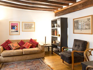 Warm and classical 1 bedroom apartment in Le Marais