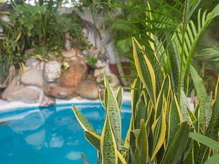 Sayulita Oasis-Entire property, sleeps up to 23!