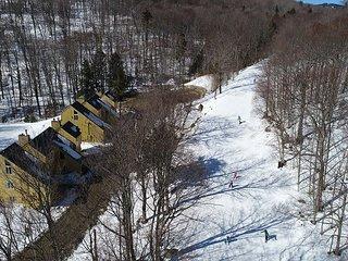 Luxury One Bedroom Condominium #5 SkiOnSkiOff Great Eastern Ski Trail!