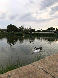 Lago di Sassano
