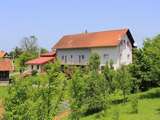 Studio flat Donji Cerovac (Plitvice) (AS-17482-a)