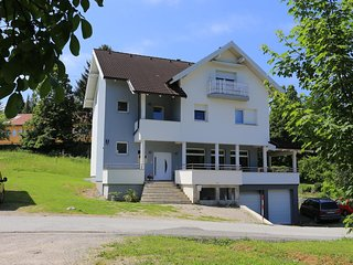 Two bedroom apartment Slunj, Plitvice (A-17416-a)