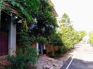 Aurodham