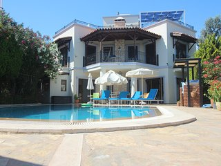 Spacious 3 bedroom air conditioned secluded villa in quiet location with pool