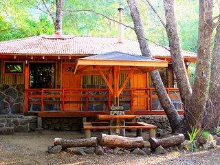 La Cabana de Piedra, Cabana Roble, para 4 pp, km 64,5, piscina,tina lena, rio
