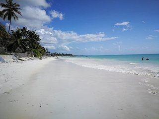 LEmON DROP Zanzibar
