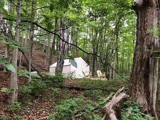 Tentrr - Camp Creekside