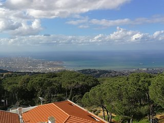 Lebanon holiday rentals in Mount Lebanon Governorate, Broummana