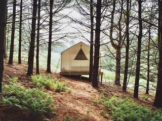Tentrr - Forest Hideaway
