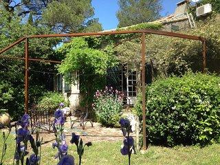 Maison de charme , pins centenaires
