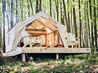 Tentrr – Hollow Tree Camp