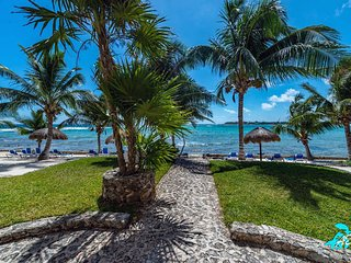 Classic Akumal Beachfront: Gorgeous Views, Pool and Seaweed Free BEACH