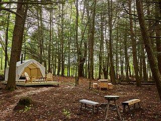 Tentrr - Kortright Creek Kamp