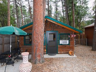 River Cabin - Cozy Cabins Real Estate, LLC.