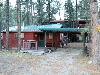 Little Bear Cabin - Cozy Cabins Real Estate, LLC.