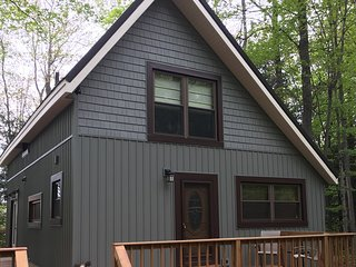 KALKASKA GETAWAY (Kalkaska, MI): YEAR-ROUND rental-Sleeps 14, pet-friendly