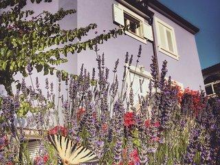 Villa Millefiori - cosy apt 2+1pax, 2' from sea, parking & terrace