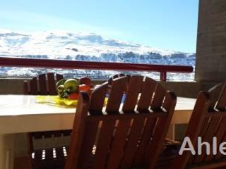 WOW Summer/winter escape-Faraya furnished super chalet