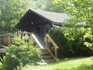 Charming Cozy Log Cabin