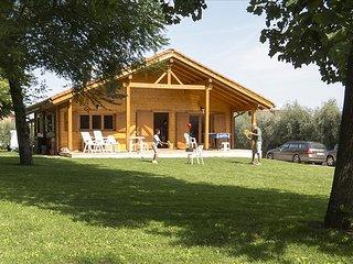 Villa Degli Ulivi, con grande Giardino e Piscina