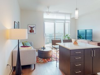 Stunning apartment in the medical district w/ shared pool, gym, & pool table!