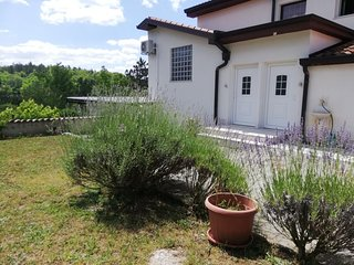 Two bedroom apartment Buzet, Central Istria - Sredisnja Istra (A-17562-a)