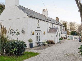 Bryn Euryn Cottage - 28135