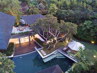 Artistic Luxury Villas in Ricefield - Sin Sin one